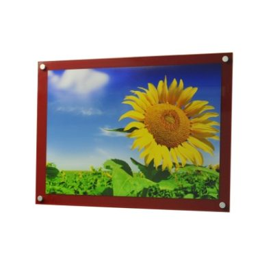 A3 Coloured Wall Mounted Photo Frame