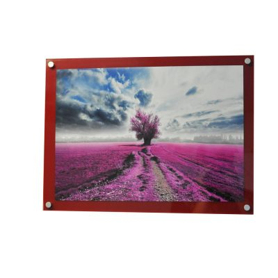 A5 Coloured Wall Mounted Photo Frame